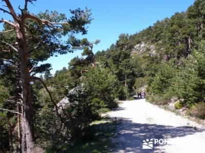 Rio Moros - Senderismo relajado; senderismo joven madrid; la casa del bosque